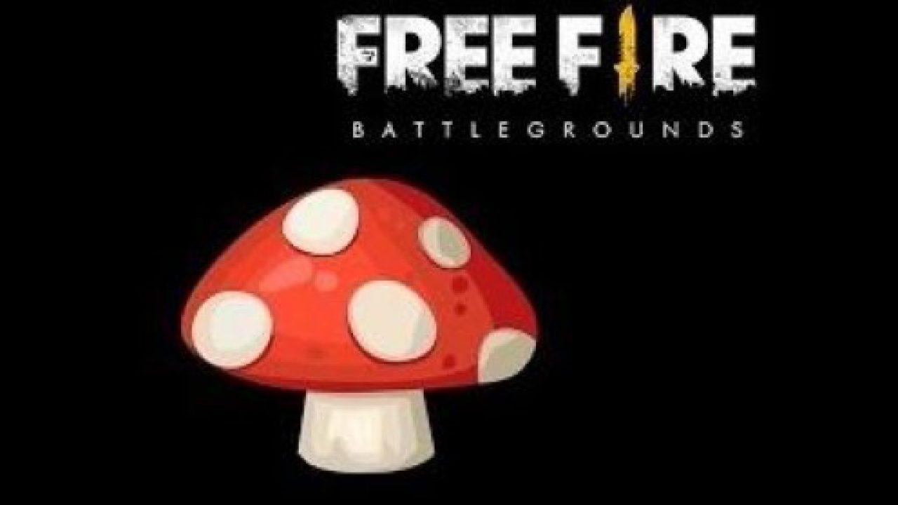 Level 4 Mushroom Free Fire
