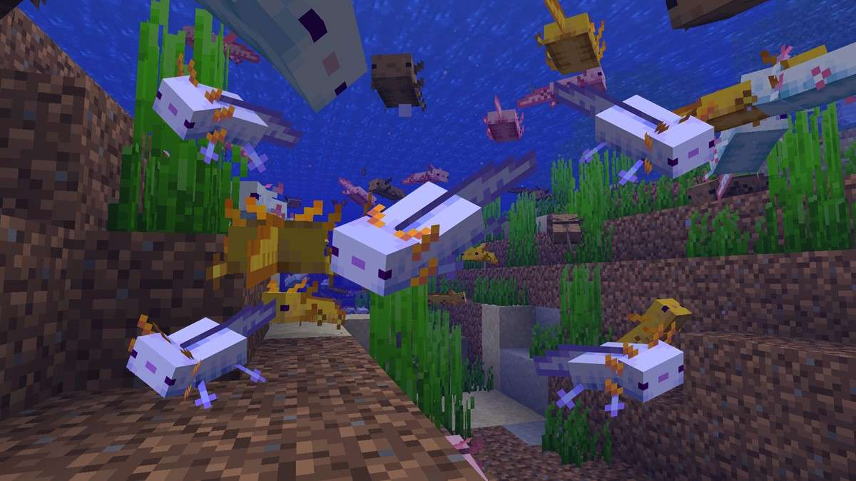 how to get blue axolotls in minecraft