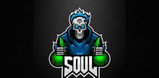Team SouL Disbanded